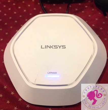 Linksys Re-Entry to Small and Medium Business Solutions